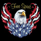 """Featured image for """"General Graphics – Bald Eagle, Free Spirit"""""""